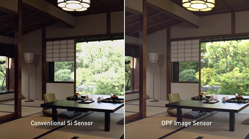 8K Sensor Wide Dynamic Range Imaging Example Japanese Style Photography